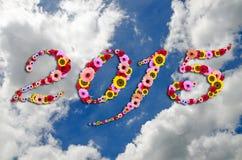 在欢乐的2015朵花在秀丽平安的天空背景 免版税库存图片