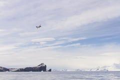 在欺骗岛,南极洲的双翼飞机 图库摄影