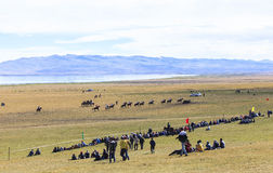 在歌曲Kul湖的节日在吉尔吉斯斯坦 库存图片