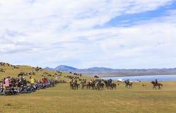 在歌曲Kul湖的马比赛在吉尔吉斯斯坦 库存图片