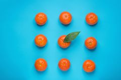 在正方形一的行安排的明亮的成熟蜜桔与绿色叶子在中部 背景看板卡祝贺邀请 被称呼的创造性的图象 图库摄影