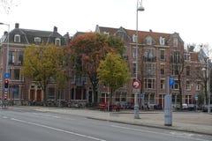 在正方形的三棵树在阿姆斯特丹在秋天 库存照片