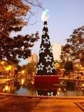 在正方形的圣诞树 图库摄影