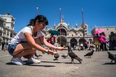 在正方形的妇女旅游哺养的鸽子-圣标记正方形- 库存照片