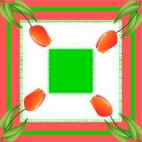 在正方形的红色郁金香 图库摄影