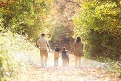 在步行的美丽的年轻家庭在秋天森林里 免版税图库摄影