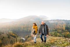 在步行的资深夫妇在秋天自然 库存图片