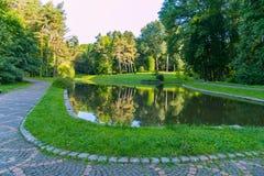 在步行胡同中间的一个干净的装饰湖反对树木丛生的公园树的背景 免版税库存照片