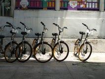 在武吉免登步行的出租自行车 库存图片