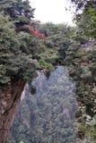 在武陵源风景区附近的一座自然桥梁 免版税库存图片