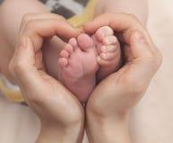 在母亲现有量的婴孩英尺 在女性心形的手特写镜头的脚 愉快概念的系列 子项她的妈妈 免版税图库摄影