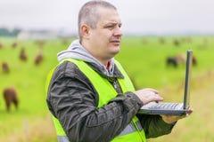 在母牛附近的农夫在牧场地 免版税库存照片