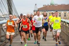 在每年克拉科夫国际性组织马拉松期间的未认出的参加者 库存图片