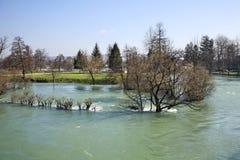 洪水在比哈奇 达成协议波斯尼亚夹子色的greyed黑塞哥维那包括专业的区区映射路径替补被遮蔽的状态周围的领土对都市植被 免版税库存图片