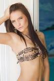 在比基尼泳装的美丽的性感的深色的妇女夏天纵向 免版税库存图片