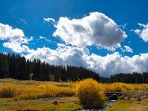 在比格克里克的早期的秋天 库存照片
