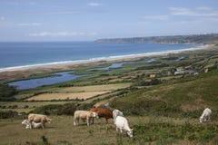 在比维尔附近的海景在Normady 免版税图库摄影