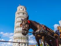 在比萨斜塔的用马拉的小室-一个旅游胜地-比萨意大利- 2017年9月13日 免版税库存图片