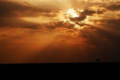 在马塞语mara的日落 免版税库存照片