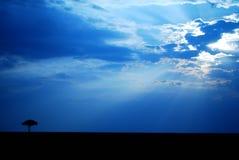 在马塞语mara的日落 免版税图库摄影