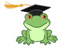 在毕业盖帽的青蛙 免版税图库摄影