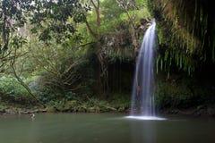 在毛伊夏威夷的北边Twinfalls 免版税库存照片
