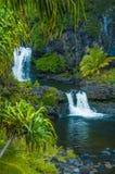 在毛伊的瀑布场面 免版税图库摄影