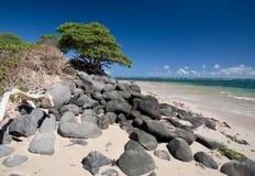 在毛伊,夏威夷的海滩 库存照片