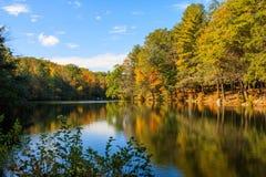 在毛刺池塘反映的秋天场面 库存图片