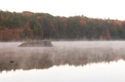 在毛刺池塘的有薄雾的早晨 图库摄影
