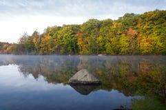 在毛刺池塘的有薄雾的早晨 免版税库存照片