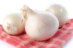 在毛巾的新鲜的白洋葱 免版税库存照片