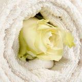 在毛巾的白色玫瑰 免版税库存图片