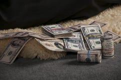 在毛皮的美元 免版税库存图片