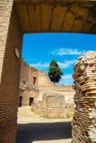 在毛皮围巾的小山的古老废墟在罗马,意大利 免版税库存照片