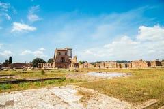 在毛皮围巾的小山的古老废墟在罗马,意大利 库存图片