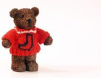 在毛线衣的熊 库存图片