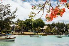在毛里求斯北部的美丽的海滩 免版税库存照片