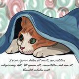 在毯子下的大睡觉猫 免版税库存图片