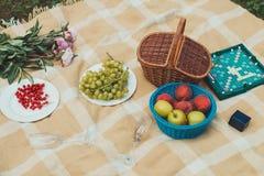 在毯子的果子 免版税库存图片