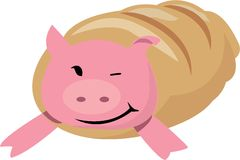 在毯子的猪 库存照片