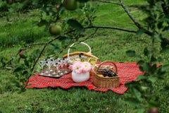 在毯子的野餐篮子 免版税库存图片
