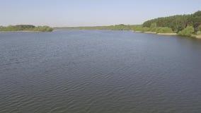 在水上的飞行反对森林背景 影视素材
