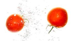 在水下的两个蕃茄在白色背景 库存照片
