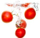 在水下的四个蕃茄在白色背景 库存图片
