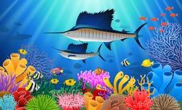 在水下的旗鱼游泳 向量例证