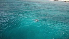 在水下的难区分的轻潜水员下潜 在视图之上 股票录像