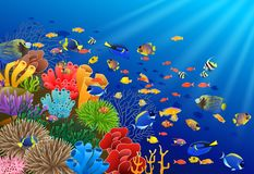 在水中的鱼游泳 库存例证