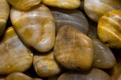 在水之下的小卵石波纹 图库摄影