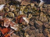 在水之下的岩石 免版税库存照片